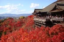 清水寺舞台から紅葉を見る
