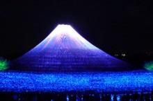 なばなの里イルミネーション富士山