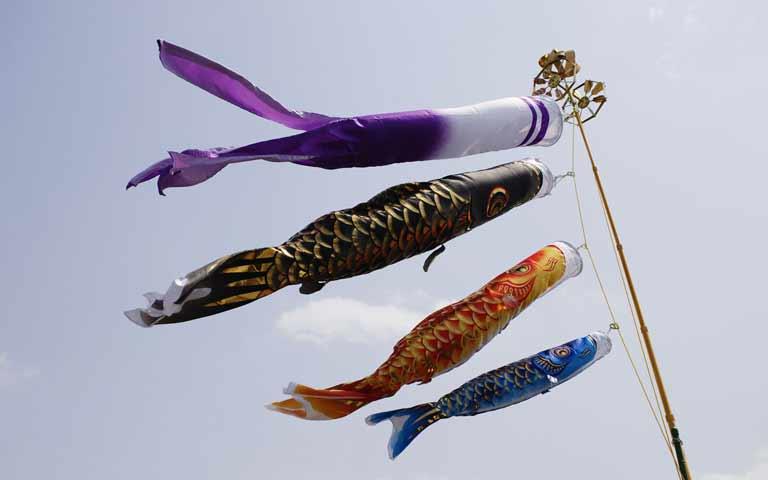 屋根より高い鯉のぼり